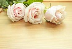 Roses pour le jour de mère Photos libres de droits