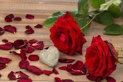 Roses pour le jour de valentine et le jour de mère Images libres de droits