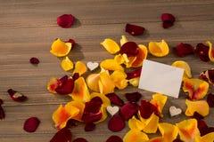 Roses pour le jour de valentine et le jour de mère Photos libres de droits