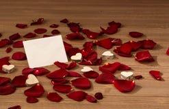 Roses pour le jour de valentine et le jour de mère Photographie stock