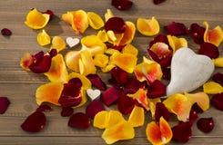 Roses pour le jour de valentine et le jour de mère Image libre de droits