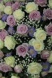 Roses pourpres et blanches de mariage Photos libres de droits