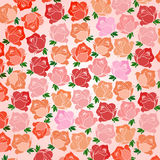 Roses Print Royalty Free Stock Image