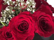 Roses. Red roses/ wedding bouquet / flowers Royalty Free Stock Images