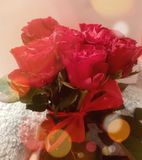 Roses redbow happy smiles love Royalty Free Stock Images