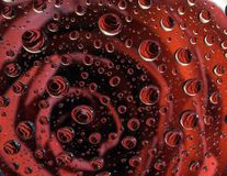 Roses reflection in thousands of raindrop. Roses is reflected in thousands of raindrops on a windscreen of a car during a rainy day. Valentine day Royalty Free Stock Image
