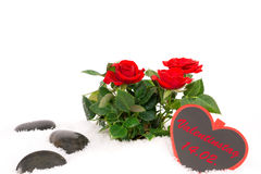 Roses, reminder of Valentine's Day Stock Photo