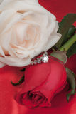 Roses and ring. Diamond wedding ring between white and red roses Stock Image