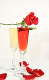 Roses of Romance Stock Photos