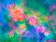 Roses and Rose Buds Royalty Free Stock Photography