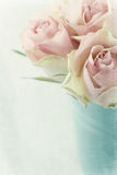 Roses roses de vintage Image stock