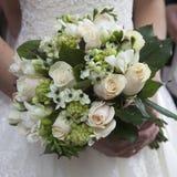 Roses roses et blanches Image libre de droits