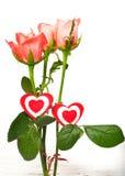 Roses roses et deux coeurs sur un fond blanc Image libre de droits