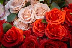 Roses roses et rouges de tissu Photos libres de droits