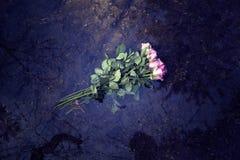 Roses roses flottant dans le magma de forêt Photographie stock