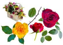 roses Roses rouges Roses jaunes Panier avec des roses Photo libre de droits