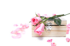 Roses roses sur la boîte en bois au foyer sélectif d'isolement Images stock