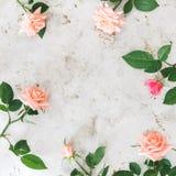 Roses roses sur la surface métallique rustique images stock