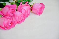 Roses roses sur le fond clair, calibre pour la carte Photo stock