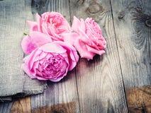 Roses roses sur le fond en bois dans le style de vintage Photo libre de droits