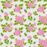 Roses roses sur le fond gris Photographie stock