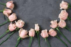 Roses roses sur le fond gris Image libre de droits