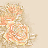 Roses roses sur le fond modifié la tonalité Photographie stock libre de droits