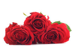 Roses rouges Image stock