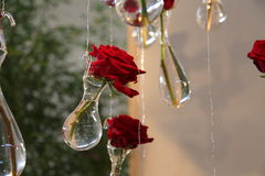 roses rouges accrochantes dans des vases en cristal Photographie stock libre de droits