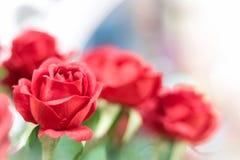 Roses rouges artificielles sur le fond brouillé image libre de droits