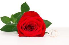 Roses rouges avec des boucles de mariage d'or Image stock