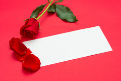 Roses rouges avec une note blanc Image stock