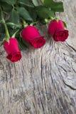 Roses rouges d'amour comme cadeau pour la célébration Photographie stock