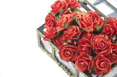 Roses rouges dans le cadre d'isolement Image libre de droits