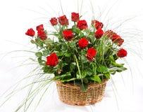 Roses rouges dans le panier Image libre de droits