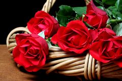 Roses rouges dans le panier Photo stock