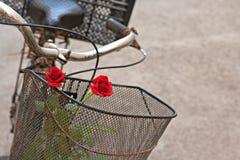 Roses rouges dans le panier de la vieille bicyclette rouillée 5 Photo stock