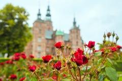 Roses rouges dans le petit jardin près du palais de Rosenborg photo libre de droits
