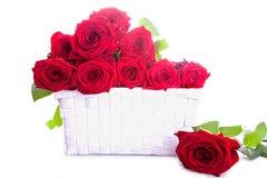 roses rouges dans un cadre Photo stock