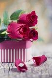 Roses rouges de jour de valentines avec les pétales et le présent dépouillé Photo stock