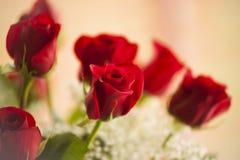 Roses rouges de l'amour Image libre de droits