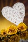 Roses rouges et boîte-cadeau, fond d'amour Images stock