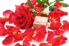 Roses rouges et cadeau Photo stock