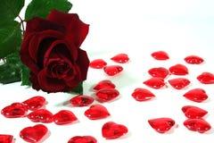 Roses rouges et coeurs rouges comme fond Image libre de droits