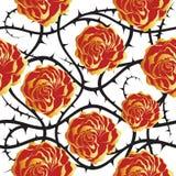 Roses rouges et d'or Configuration sans joint de vecteur Photos libres de droits