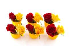 Roses rouges et jaunes dans des coquetiers Images stock