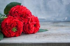 Roses rouges fraîches de jardin de vintage ` S de Valentine ou concept de carte postale de jour de ` s de mariage Photo libre de droits