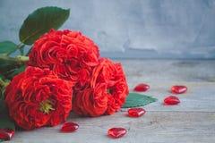 Roses rouges fraîches de jardin de vintage ` S de Valentine ou concept de carte postale de jour de ` s de mariage Images libres de droits