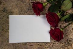 Roses rouges, pétales et papier vide blanc sur un fond en bois Images libres de droits