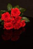 Roses rouges sur le noir Photographie stock libre de droits